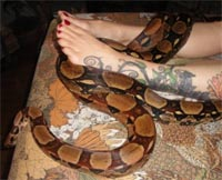 Serpentessa Snake Massage